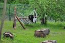 Ogród Zoobotaniczny Toruń