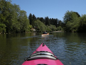 paddling upstream against the current