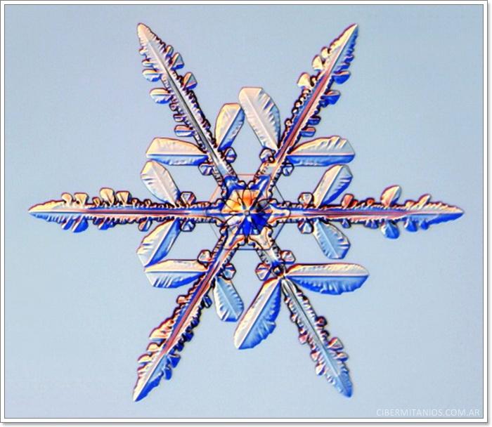 copo de nieve 3