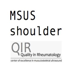 Shoulder Ultrasound screenshot 4