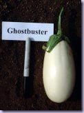 eggplant_ghostbuster small