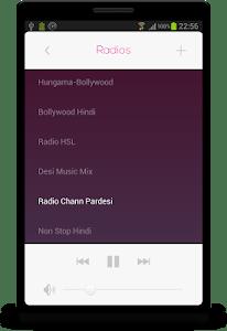 Hindi RADIO screenshot 12