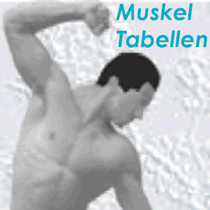 Compendium of Muscle