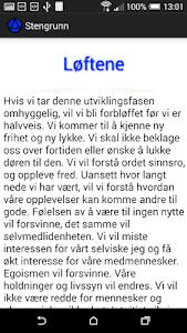 Stengrunn screenshot 6