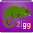 ZiggNow APK