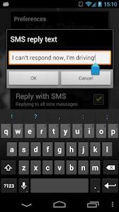 Safe Driver screenshot 6