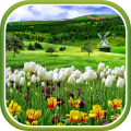 /APK_Spring-Nature-Live-Wallpaper_PC,1256027.html