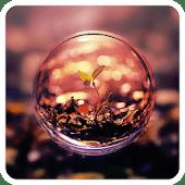 Eco Plant Beautiful Theme