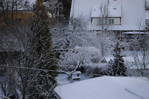 Zima w Gdańsku