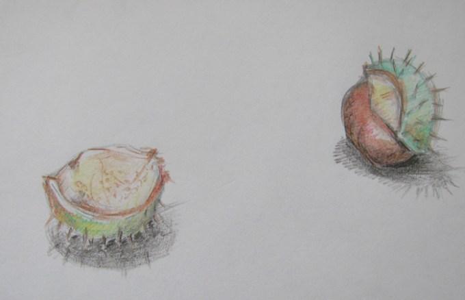 ann-sokolova-chestnuts