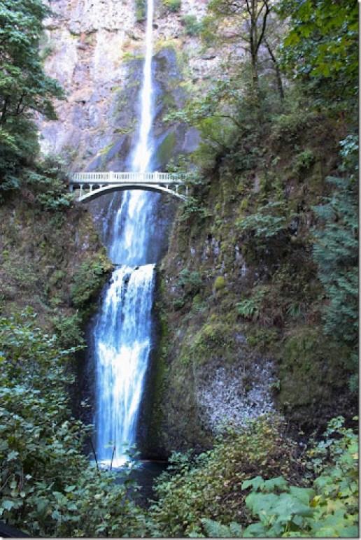Domesticability Oregon Trip Mt. St Helens Haystack Rock Tidepools_-19