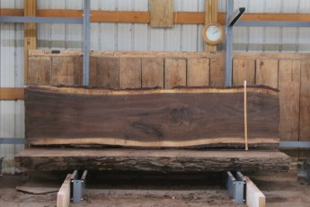 "534 Walnut -6  10/4 x  30"" x  28"" Wide x 10'  Long"