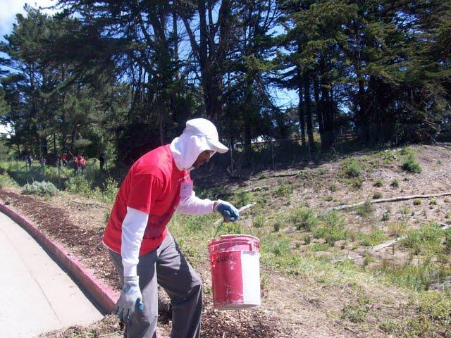 IVLP 2010 - Volunteer Work at Presidio Trust - 100_1425.JPG