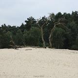 BVA / VWK kamp 2012 - kamp201200331.jpg