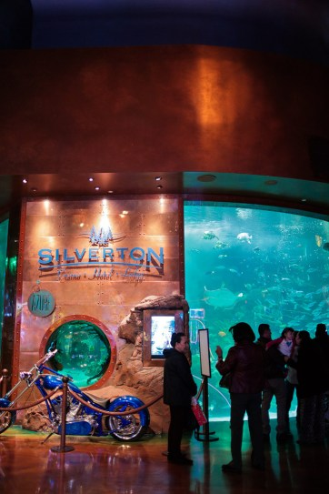 The Aquarium at the Silverton Hotel (25 Free Things To Do in Las Vegas).