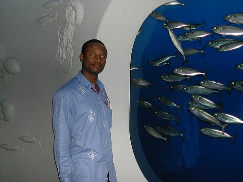 Montery Bay Aquarium, USA - 207779440_95de3bd031.jpg