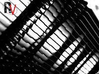 Noctua NH-C12P SE14 17.jpg