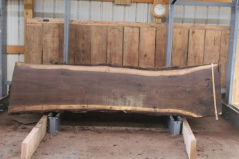 "534 Walnut -3  10/4 x  31"" x  25"" Wide x 10'  Long"