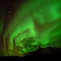 Lofoten Aurora_Alan Cliff.jpg
