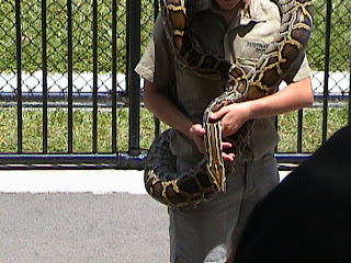 0060The Snake Show