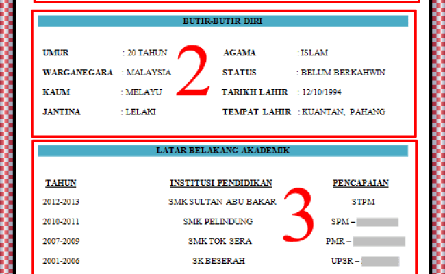 Contoh Resume Lepasan Spm Ringkas Simple Terbaik Cute766