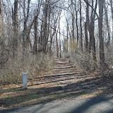 Institute Woods 6K - IMG_4574.JPG