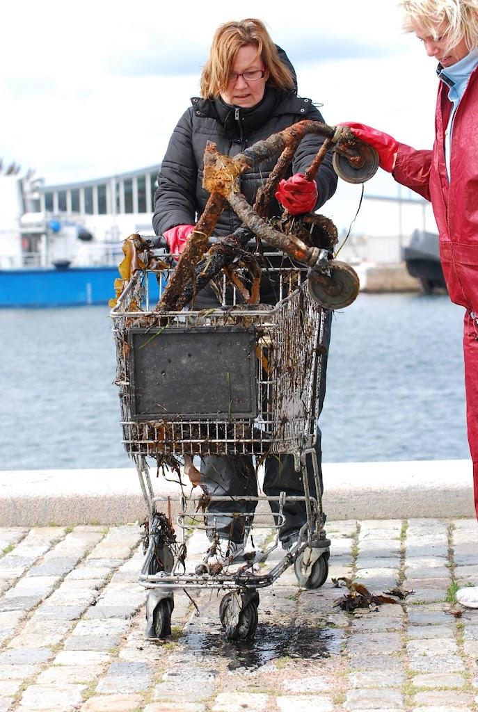Hamnstädning 2011 Foto Ida Ekberg - DSC_0191.JPG