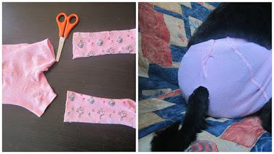 трусы для собак во время течки