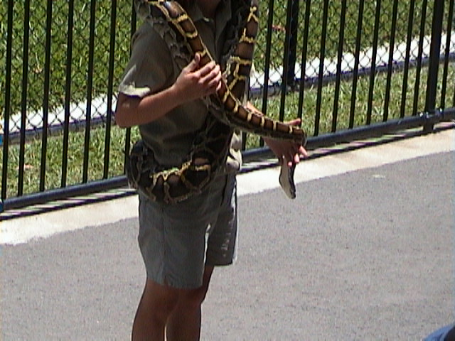 0070The Snake Show