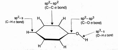 Phenol Structure, phenol Hybridisation, phenol Reaction , crack Chemistry