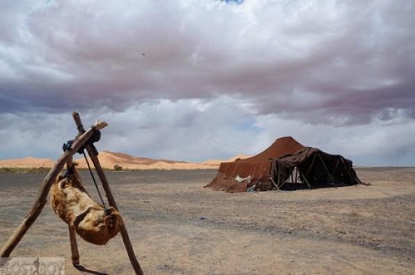 sahara desert-18