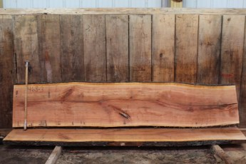 "468 Cherry -3 2 1/2 "" x 24"" x 21"" Wide x 10' Long"
