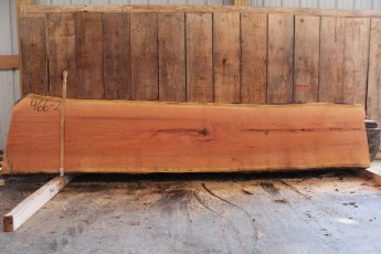 "466 Cherry -2 2 1/2"" x 25"" x 23"" Wide x 10' Long"
