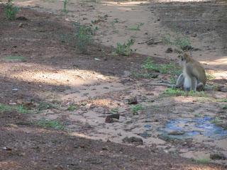 0024Angkor_Wat