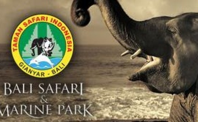 Lowongan Kerja Hotel Taman Safari Terbaru Safari Cute766
