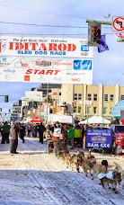 Iditarod2015_0341.JPG