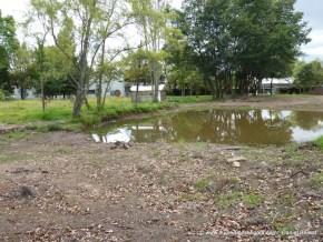 Humedal Mamá Dominga 11 Septiembre de 2012