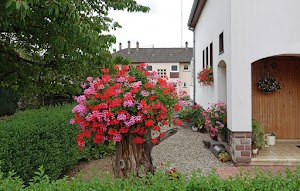 150804.Maisons.Fleuries17.jpg
