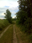 Auf dem Weg Richtung Buschberg