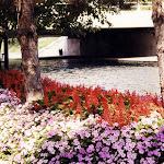 images-Seasonal Color-seasonal_b28.jpg