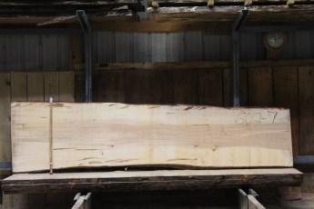 "602  Ambrosia Maple - 7 8/4x 32"" x 27"" Wide x  10'  Long"