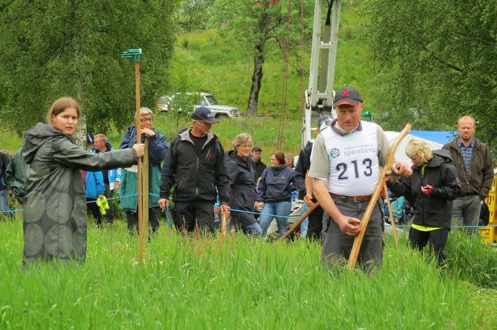 Kosidba u Norveskoj- Turisticka organizacija opštine Ljig243