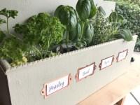 wall-mounted-herb-garden.jpg