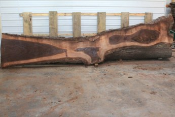 Walnut 219-1  Length 17' Max Width (inches) 36 Min Width (inches) 6 Notes 10/4 Kiln Dried
