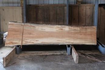 "567  Maple Ambrosia -3 10/4x 33"" x 27"" Wide x  10'  Long"