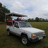 Safari autohton
