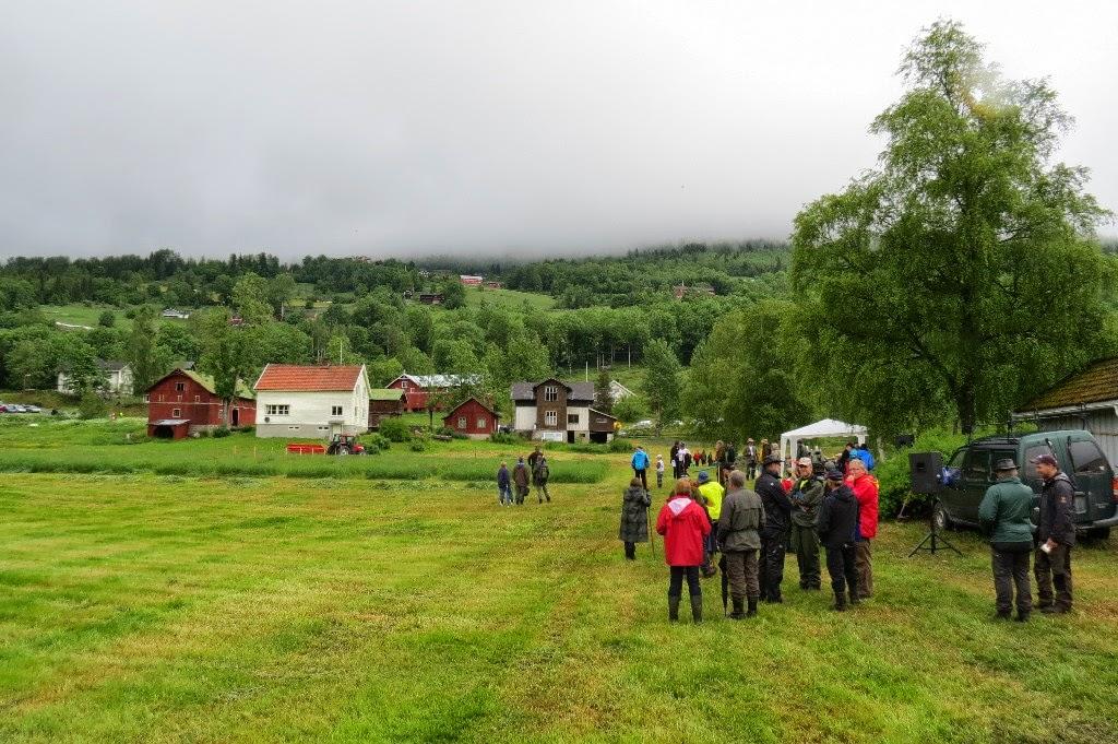 Kosidba u Norveskoj- Turisticka organizacija opštine Ljig162
