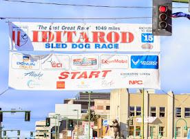 Iditarod2015_0356.JPG