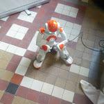 IMG_20130202_111804.jpg