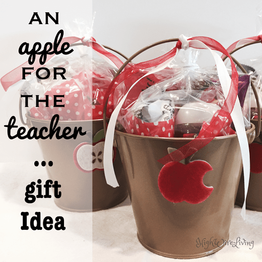Apple for the teacher bucket